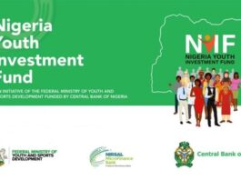 Nigerian Youth Investment Fund Loan Application